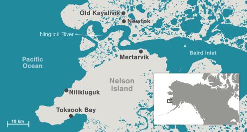 map-newtok_0